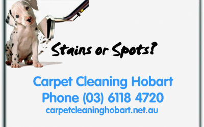 Carpet Cleaning Hobart Spots youtube pic